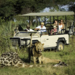 Tips for Planning a Family Safari in Africa